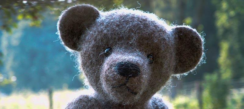 bären13
